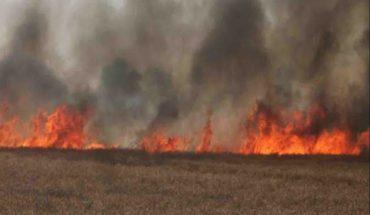 जालौन-आग से 10बीघा फसल हुई खाक। Soni News