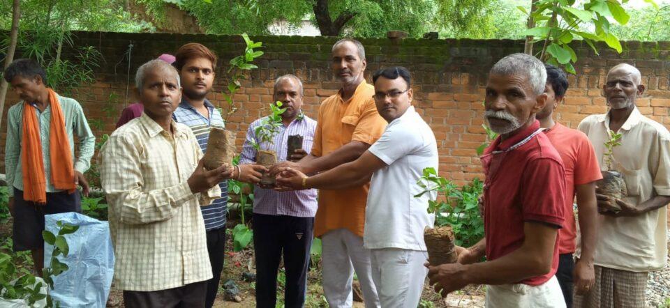 जालौन-वसुधा को हरा भरा रखने हेतु पौध वितरण व वृक्षारोपण